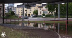 20130603_31016_Hochwasser_Straßenbahn_Wasserzeichen